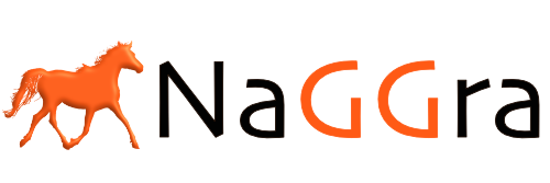 NaGGra Digital marketing Agency logo