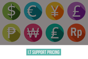 Naggra I.T support services pricing