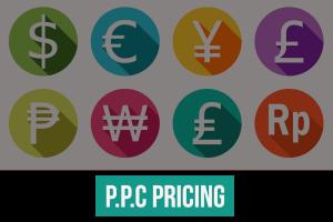 Naggra PPC pricing