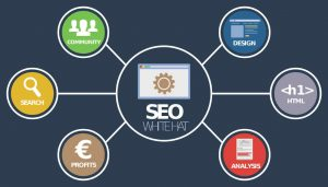 result oriented seo agency northampton