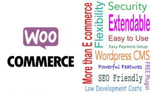 Cheap WooCommerce designs