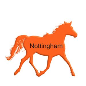 top professionals in Nottingham page